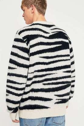 rayure zebre